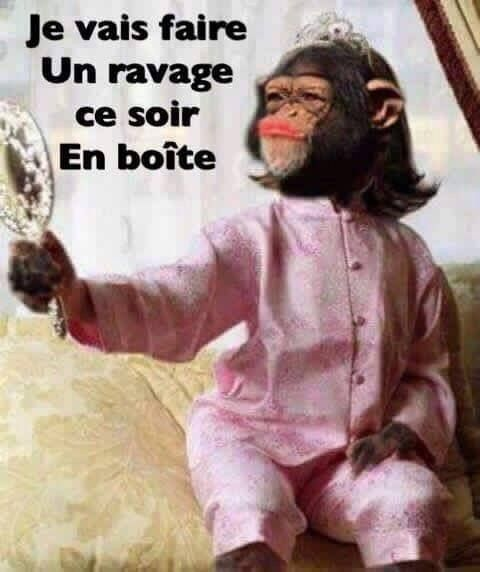 Turbo HUMOUR TEXTES IMAGES WU33