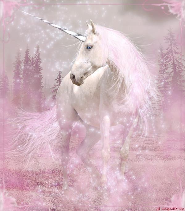 peinture chevaux wallpaper - photo #47