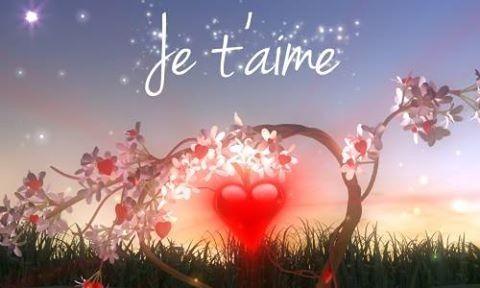 Declaration d amour - Image d amour gratuite ...