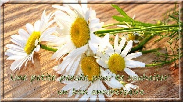 Carole bouquet le bon roi dagobert - 2 4
