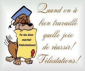 Club Canin Chambéry.